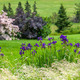 Prince Edward Island Countryside - PhotoDune Item for Sale