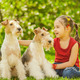Young Girl and two fox terriers - PhotoDune Item for Sale