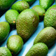 Avocado Hass Rolling in Linepack Industrial - VideoHive Item for Sale