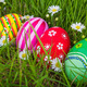 Easter Eggs on Fresh Green Grass - PhotoDune Item for Sale