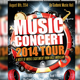 Music Concert Tour 2014 Flyer - GraphicRiver Item for Sale