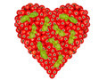 Large heart made of many Tomatoes and basil - PhotoDune Item for Sale