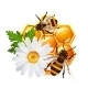 Honeycomb Bee Flowers Emblem - GraphicRiver Item for Sale