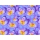 Crocus Flower Background - GraphicRiver Item for Sale