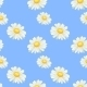 Camomile Seamless Pattern - GraphicRiver Item for Sale