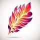 Abstract Colorful Isolated Pink Feather - GraphicRiver Item for Sale