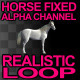 Horse Fixed Loop - VideoHive Item for Sale