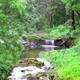 Tranquil Stream - VideoHive Item for Sale