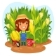 Harvesting Female Farmer in a Cornfield - GraphicRiver Item for Sale