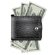 Leather Wallet with US Money  - GraphicRiver Item for Sale