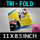 Company Brochure Tri-Fold Brochure Vol.8 - GraphicRiver Item for Sale