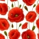 Poppy Seamless Pattern - GraphicRiver Item for Sale