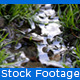 Little River - VideoHive Item for Sale