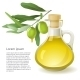 Olive Oil - GraphicRiver Item for Sale
