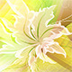 Bright Floral Background - GraphicRiver Item for Sale