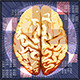 Brain Work - GraphicRiver Item for Sale