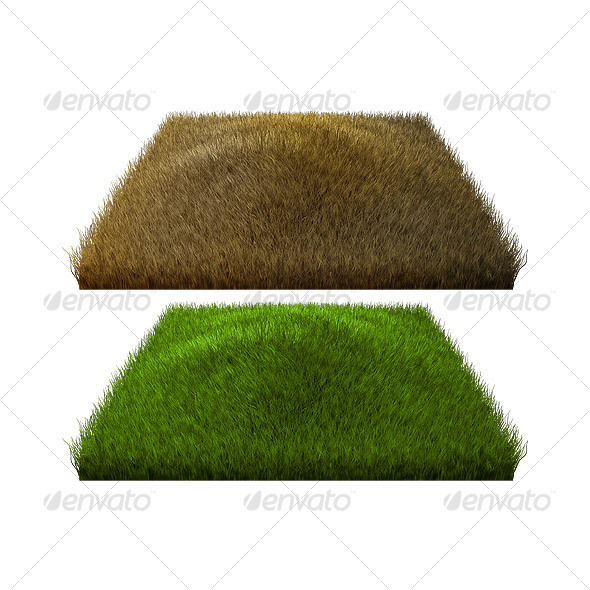 GraphicRiver Normal and Burned Grass 32468