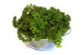 Bunch of parsley - PhotoDune Item for Sale
