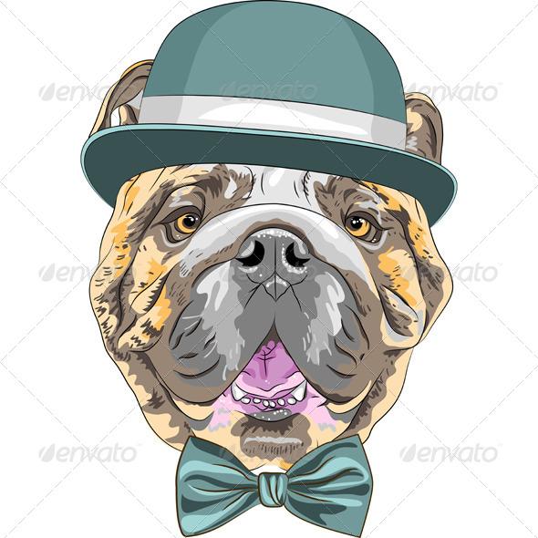 GraphicRiver Cartoon Hipster English Bulldog 7819540