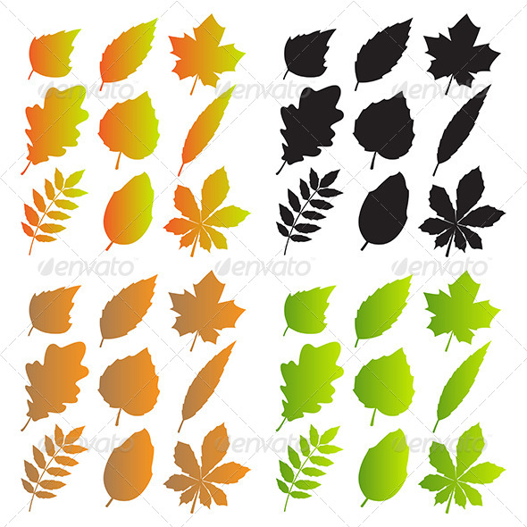 GraphicRiver Silhouettes of Leaves 7829410