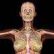 Fractal Art Collection - Titanium Tube - HD Loop - 231