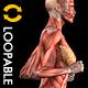 Fractal Art Collection - Titanium Tube - HD Loop - 235