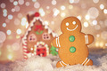Gingerbread man cookie standing beside house - PhotoDune Item for Sale