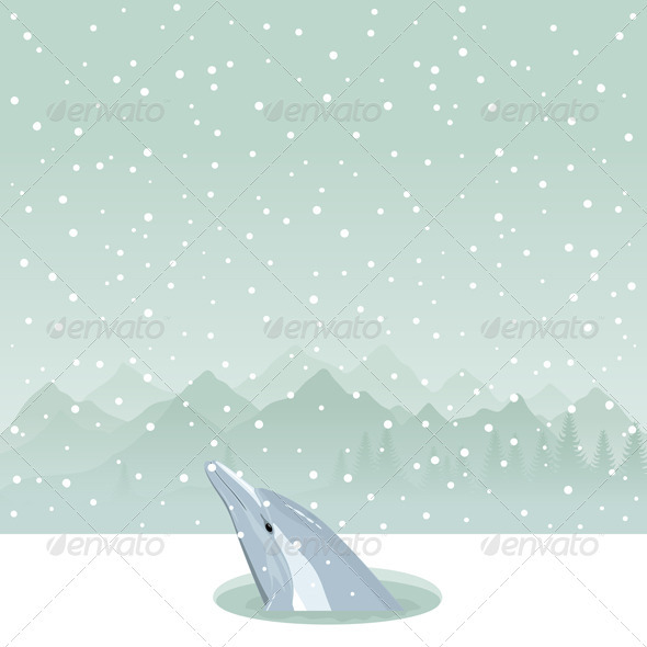 Graphic River Dolphin in an Ice-Hole Vectors -  Characters  Animals 849958